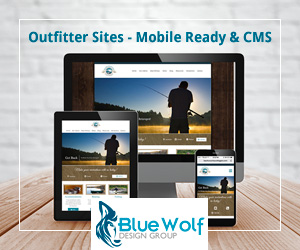 Mobile Ready Websites Blue Wolf Newfoundland